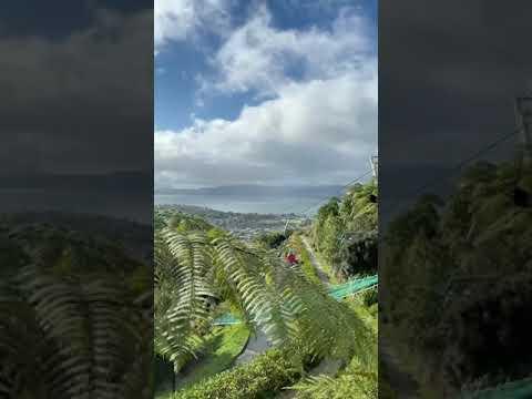 雨后的好天气在Rotorua的skyline