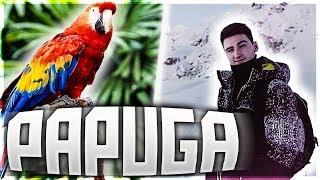 LutcheRr ft. Rembol - Papuga [Remix]