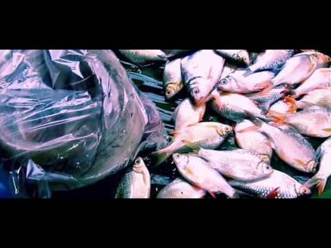 Fresh Food Market in Thailand