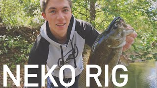 Neko Rig --  How to Rig It and Fish It + River Smallmouth