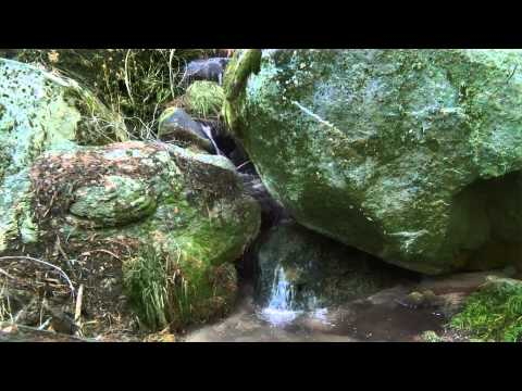 Green Rocks  20 min