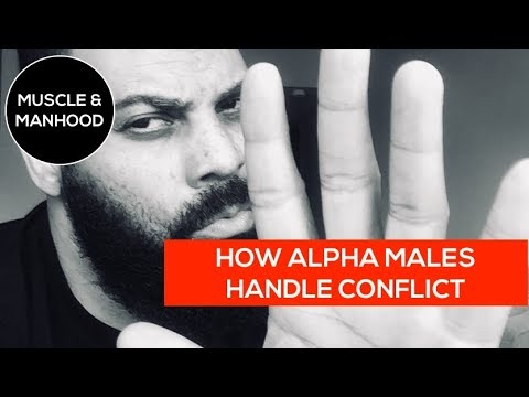 Dealing with alpha males
