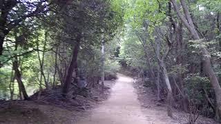 Temple Pathway Japan - Walking Around Shoshazan Engyo-ji - Himeji, Hyogo