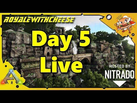 Cheese Supporter Server Day 5 Live!!!