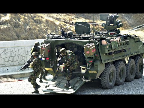 No Mercy hundreds Of Soilders RoleOut heavy tanks In Mobay. St. James LockDown State Of Emergency.