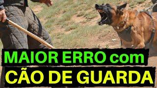 O MAIOR ERRO COM CÃO DE GUARDA! | Cães de Guarda