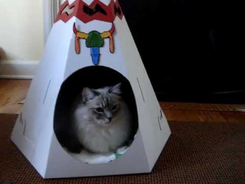 Beds For Cats - The Loyal Luxe Native American Teepee - ねこ - ラグドール - Floppycats