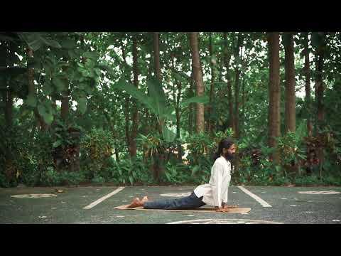 Urdvamukha Svanasana - Upward Facing Dog Alignment