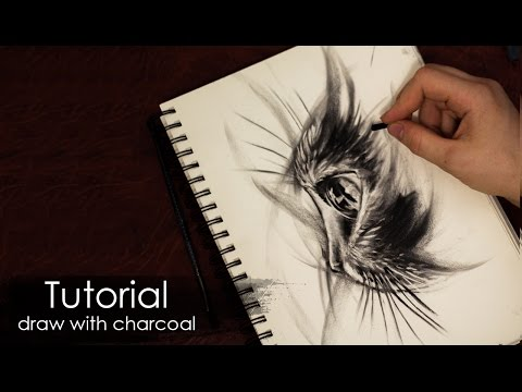 Tutorial |  How to draw a cat with charcoal and pencil - Sketch style - Drawing techniques