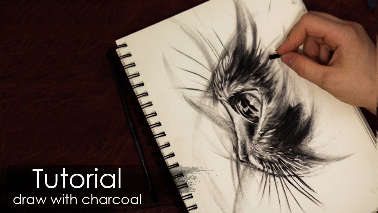 Tutorial how to draw a cat with charcoal and pencil sketch style drawing techniques
