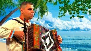 Цыганочка!  ☀️Очень красивые цыганские переходы на гармони!╰❥ Tsyganochka at the accordion! ☀️