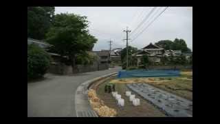 麦秋 市場駅あたり散策  風景写真館 福岡県福智町市場(赤池)