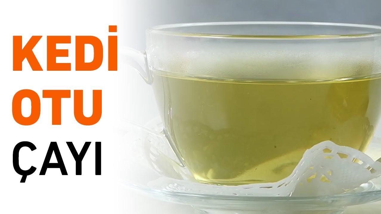 Karabaş Otu Çayı Nasıl Yapılır Faydaları Zararları Nelerdir Neye İyi Gelir