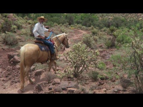 Las Vegas Fun Things to do: Horseback Riding Trail Tour at Bonnie Springs Ranch