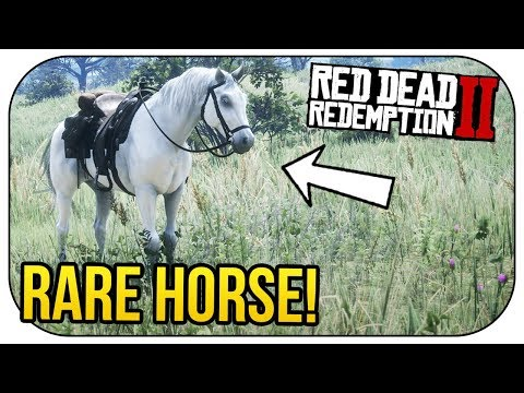 How To Get The BEST HORSE In Red Dead Redemption 2! (*FREE*)