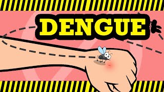 What is Dengue? Causes, Signs and Symptoms, Diagnosis and treatment.