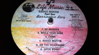 Barrington Levy - While Your Gone