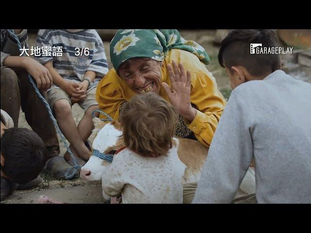 改變影史奇蹟!同時入圍第92屆奧斯卡最佳國際影片及最佳紀錄片獎【大地蜜語】Honeyland  3月6日 自然之聲