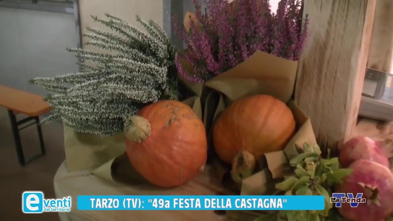 EVENTI - Colmaggiore di Tarzo - 49a Festa della castagna
