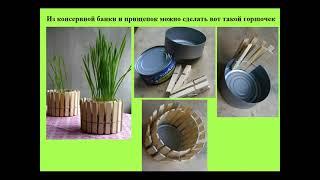 Необычные горшки для растений и цветов