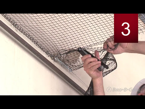 Introduction To Bird Netting