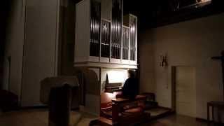 J. S. Bach: Praeludium in g, BWV 535, Berthold Mai, Orgel