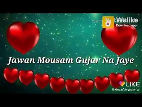 Chunna Hai Tumko Deewane Dil Ne💐💐 ||Best WhatsApp Status|| Ringtones Status