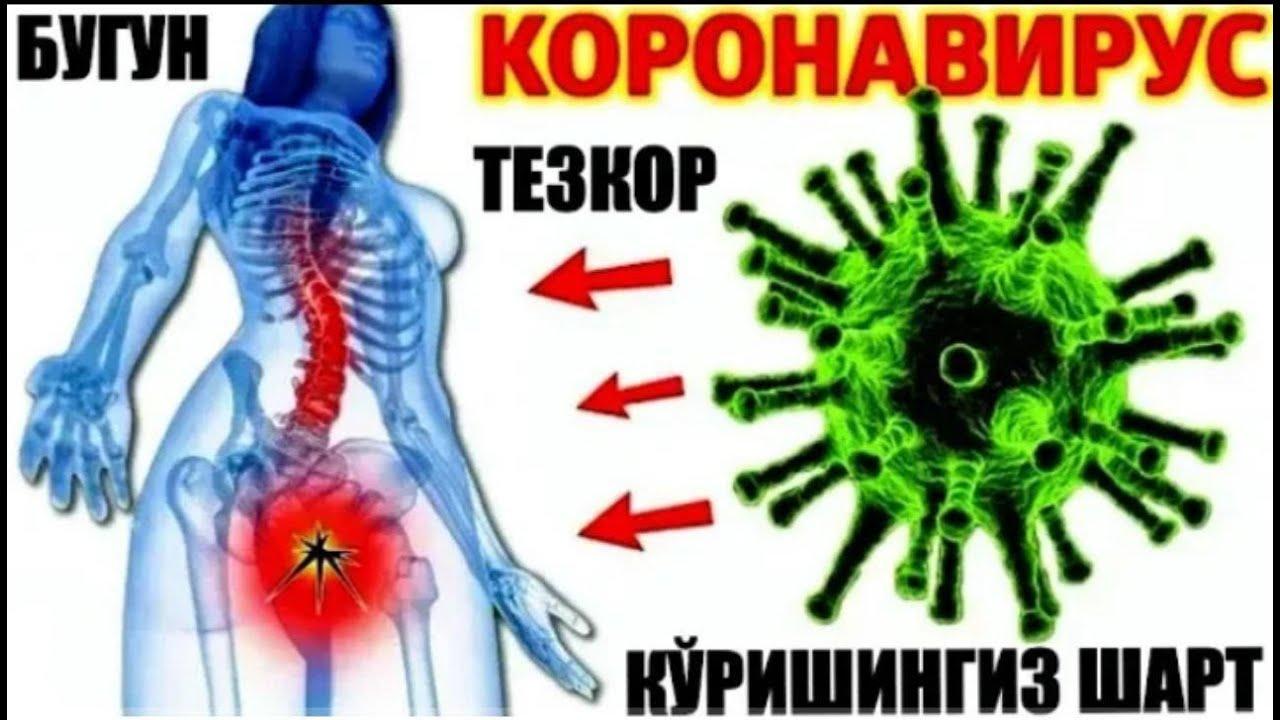 Koronavirus: Pandemiya vaqtida homilador va ko'krak bilan emizikli ayollar nima qilishi kerak? MyTub
