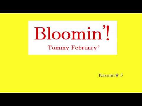 【初音ミク】『Bloomin'!』Tommy February6【MIDI】Kasumi★彡