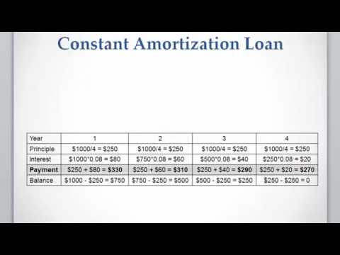 Lesson 11 video 3 Constant Amortization Loan - YouTube