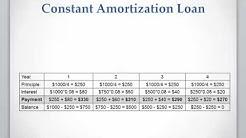 Lesson 11 video 3: Constant Amortization Loan