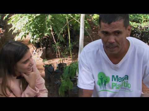 Alimentos Orgânicos e Mobilidade Sustentável - São Paulo Verde (08/07/16)