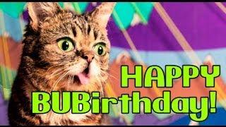 Lil BUBIRTHDAY: BUB Turns 2!