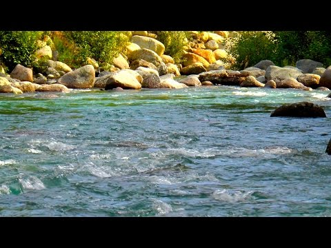 Relaxing Nature Sounds River White Noise | Use for Sleeping, Studying, Writing or Improving Focus