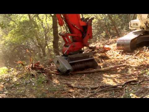ARCD Forest Land Management & Hazardous Fuel Reduction
