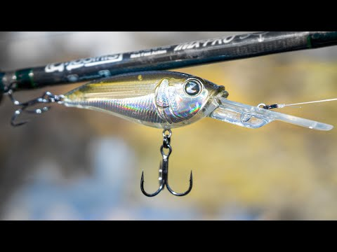 TacticalBassin's New Cold Water Crankbait! Catch Your Biggest Bass This Winter!