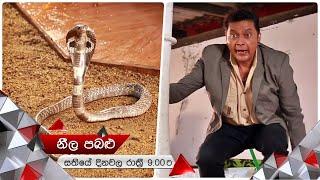 ඩිලාන්ටත් හරි වගේ | Neela Pabalu | Sirasa TV Thumbnail