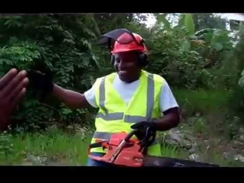 Casco Mandeville Jamaica ECHO BRANDS