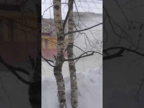 Видео Как на самом деле убирают Ярославль