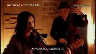 Gambar cover Hideaki Tokunaga and YUI   CHERRY Live