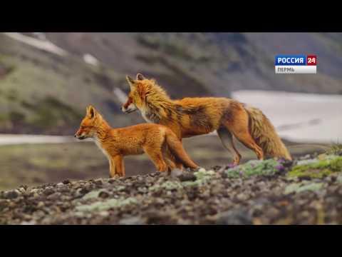 Best of Russia - Лучшие фотографии России