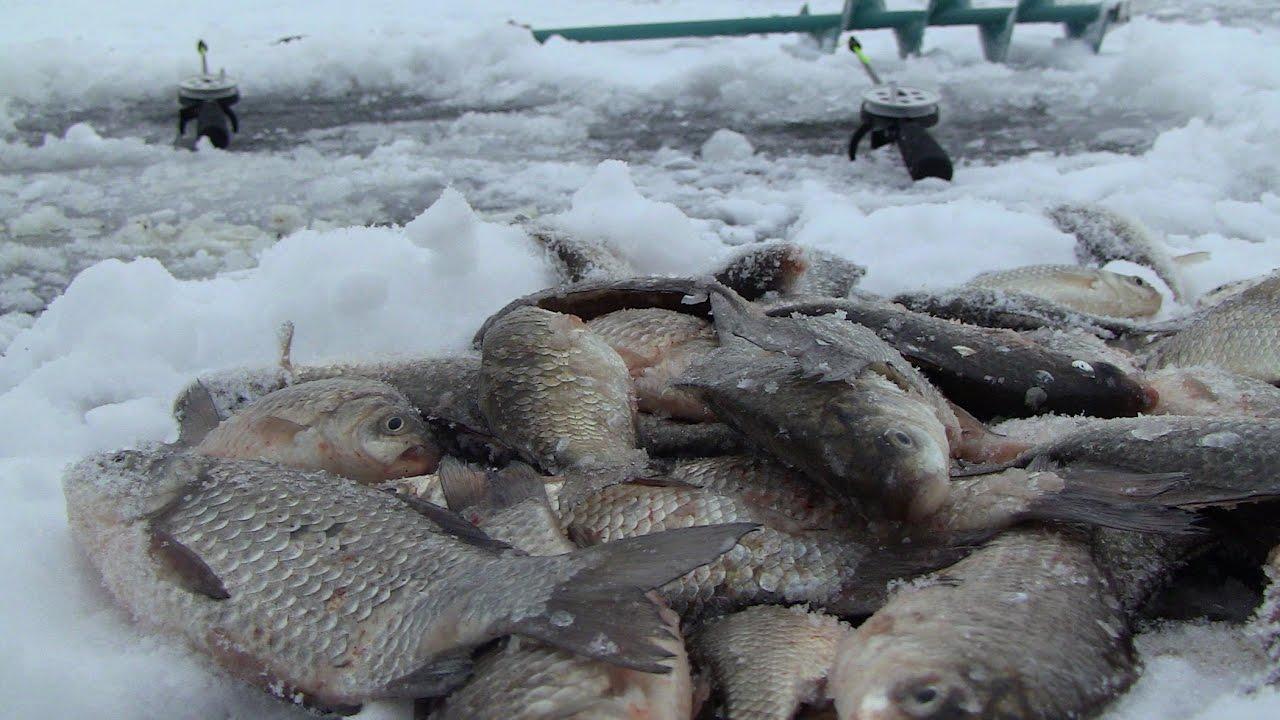 Размер бура для зимней рыбалки