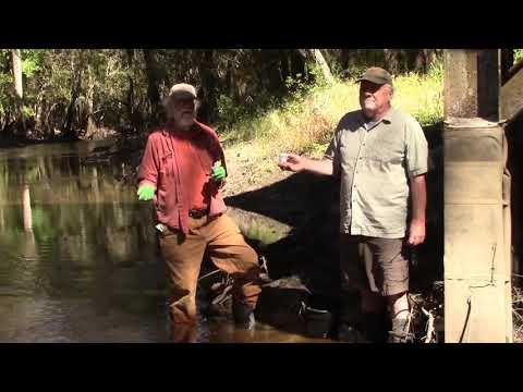 Please Vote for Clean Water --Suwannee Riverkeeper