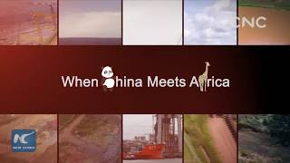 When China meets Africa