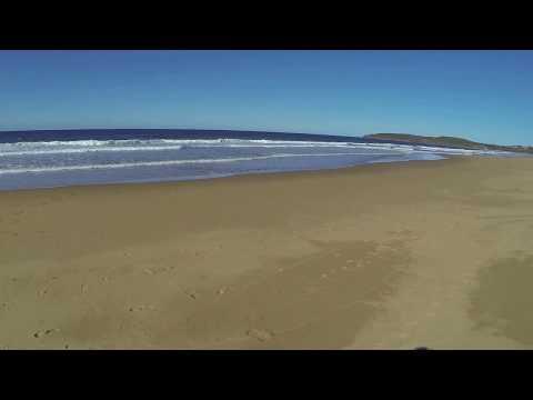 Agnes Water Beach, Seventeen Seventy (QLD) - dogexplorer.com.au
