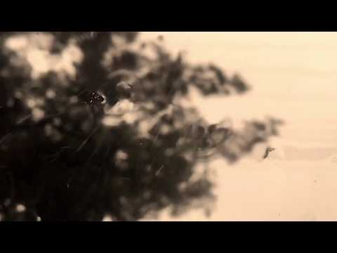 """West"" - Sleeping At Last (Micro Music Video)"