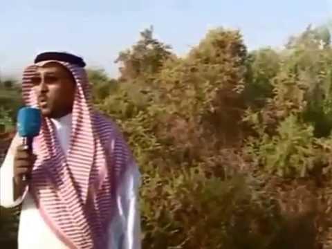 جزيرة ام القماري القنفذة البحر الأحمر السعودية Youtube