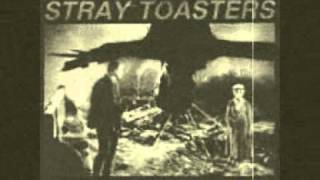 Stray Toasters - Shelter