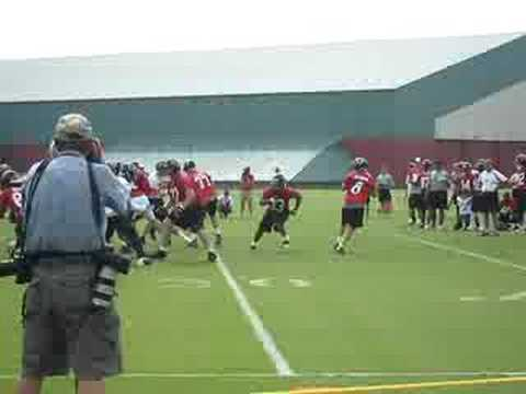 Atlanta Falcons Training Camp: Chris Redman