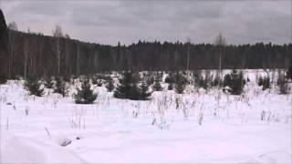 видео Применение норм земельного законодательства РФ
